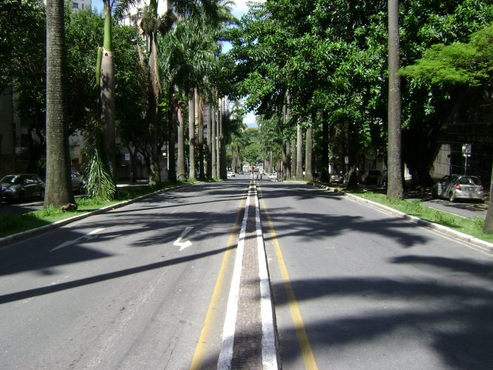 Avenida_brasil